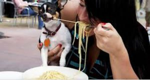 Travel Minute — Should You Dine With Dogs?